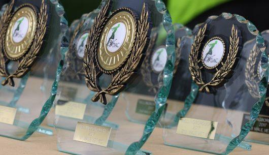 Wellingborough 5 Trophies